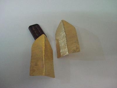 DSC04764.jpgfoglia gialla
